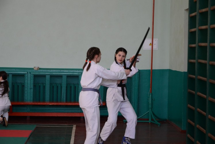 Семинар Айкидо в Житомире 24,01,2016